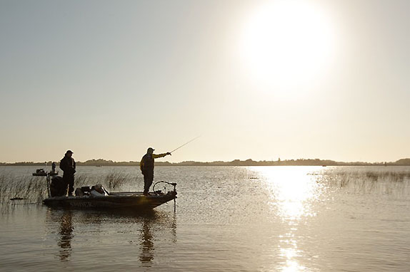 Proposal to eradicate Cal Delta bass withdrawn