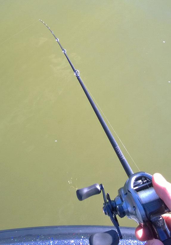 Levante casting rod